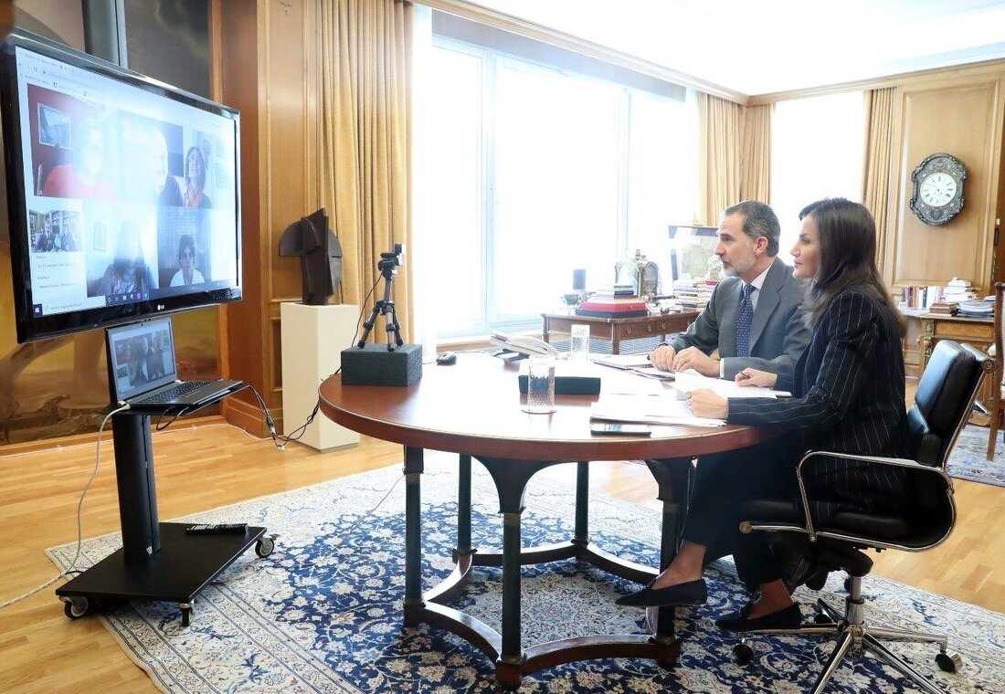 Their Majesties held a video conference with CERMI
